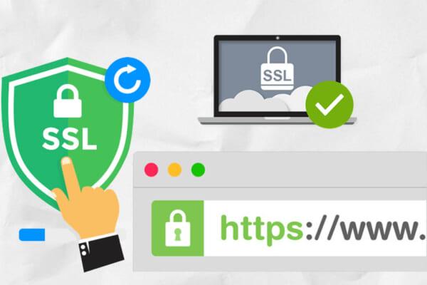 Hướng dẫn cài đặt SSL trên Plesk