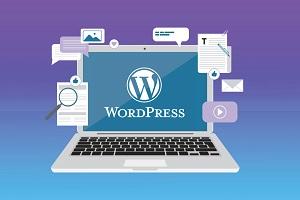 Cách đổi tên miền trong WordPress miễn phí, nhanh chóng