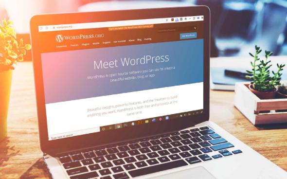 huong dan thiet ke website wordpress